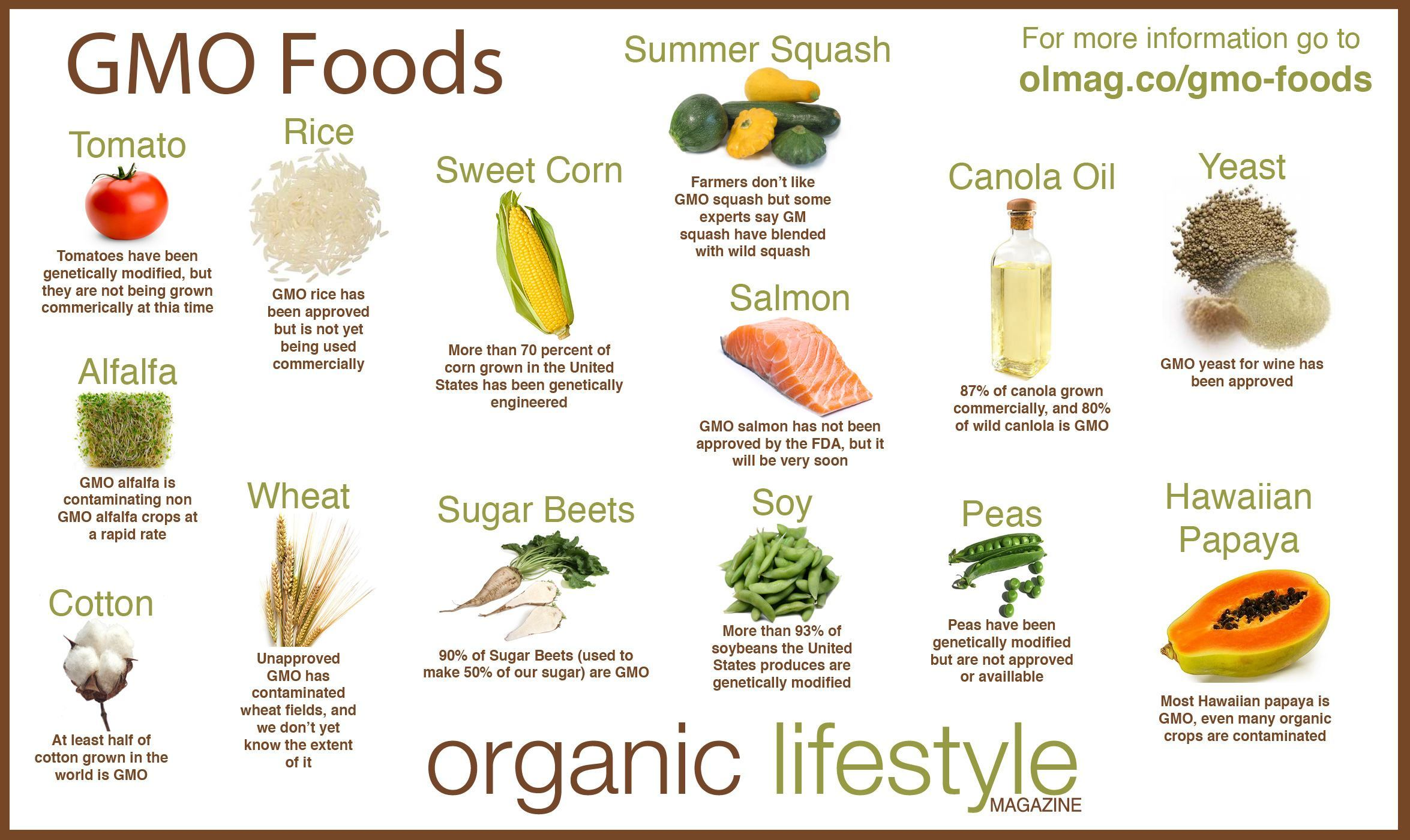 gmo-Foods-Infographic